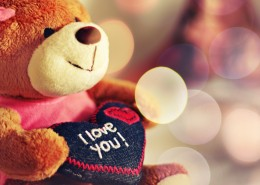 i_love_you_teddy_bear-wide